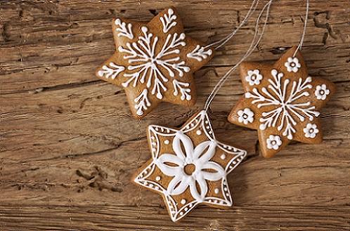 kerstmis-kerststerren-gingerbread